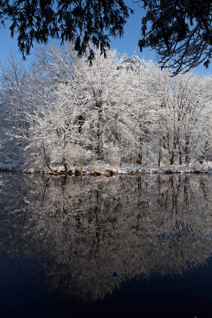 Snow, reflection, trees, pond, winter, New England, Nature, photo