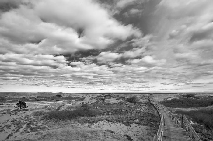 Walkway, Clouds, Plum Island, Parker River Refuge,  Massachusetts, New England, Black & White, photo
