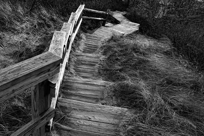 Walkway, Wooden Walkway, Plum Island, Massachusetts, Parker River Refuge, New England, Black & White, photo