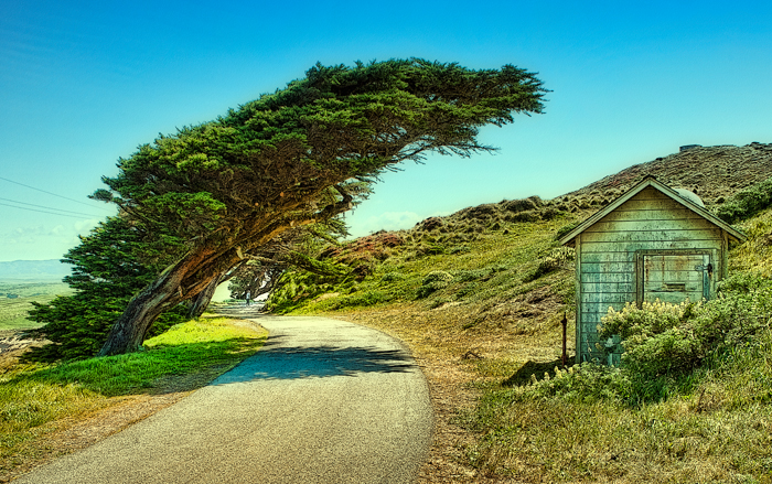Point Reyes, California, West Coast, West, West of New England, photo