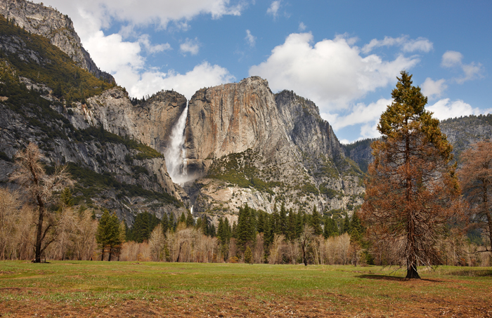Yosemite, Yosemite National Park, Spring, California, West, West Coast, West of New England, photo