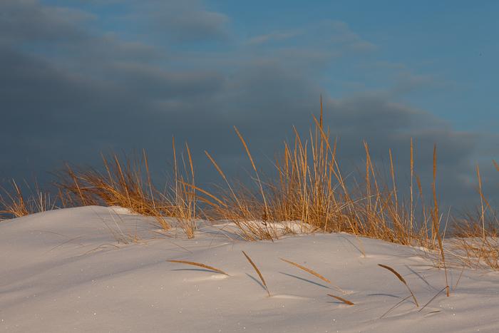 Good Harbor Beach, Gloucester,Winter, Dune, photo
