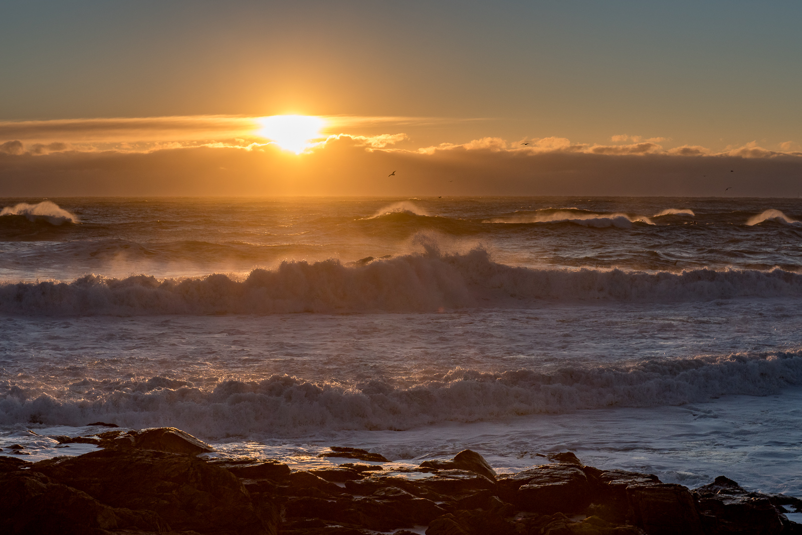 ROUGH SEAS in Southern Maine this morning (January 24, 2016) as the aftermath of the big storm that missed us snow-wise and took...