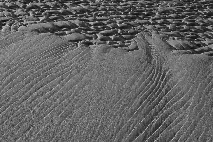 NEPW,Winterfest, Ipswich, MA, beach, sand, New England, coast, photo
