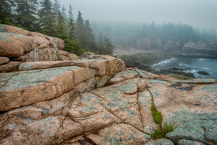 What a match: The Maine rocky coast along with fog.  Just perfect!