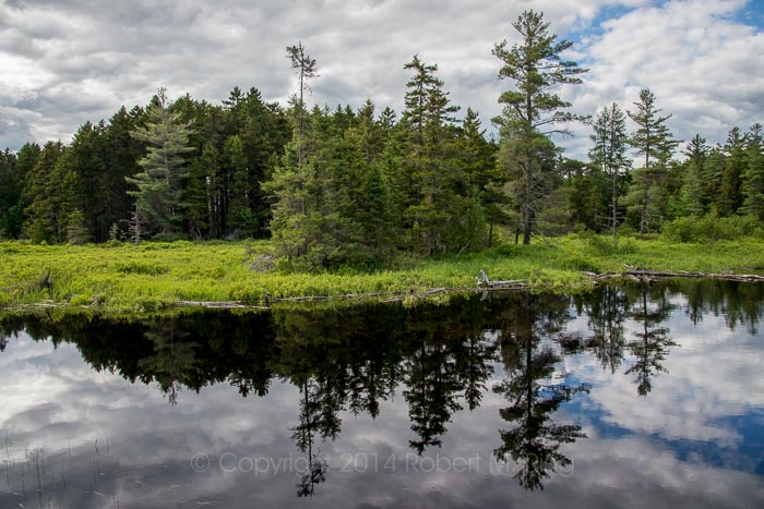 Great North Woods, Golden Road, Maine, Landscape, Scenic, New England Photo Workshops, photo