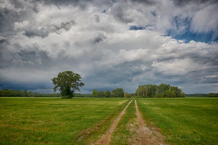 An afternoon where storms came & went. The road was a perfect leading line to the dramatic sky.