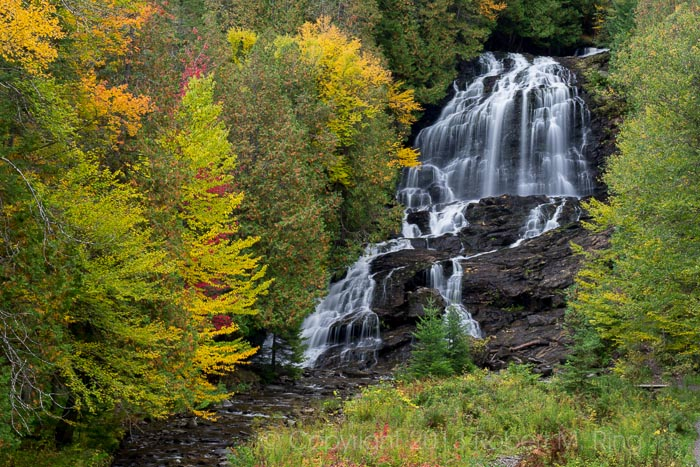 I never knew that these falls were in this area. What a great waterfall especially with foliage.