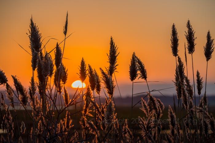 PRNWR, sunset, New England, coast, warm sky, photo
