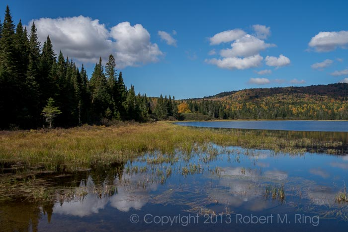 Loons, New England, Bob, Clouds, Sky, photo